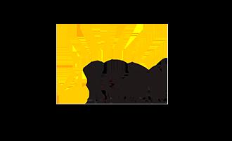 Igel Technology Logo
